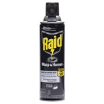 Raid Wasp and Hornet Killer - 14 Oz.