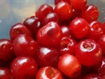 Cherry Large With Stem Premium Grade Plastic - 0.5 Gallon