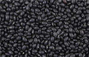 Black Beans Low Sodium All Natural #10 Can