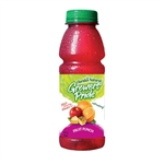 Floridas Natural Growers Fruit Punch - 14 fl.oz.