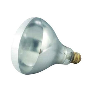 Bulb For EHL 2 Heat Lamp White 250 Watt