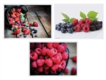 Paper Berry Delight Multipack Placemats 3 Design - 10 in. x 14 in.