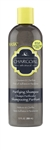 Hask Charcoal Purifying Shampoo - 12 fl. Oz.
