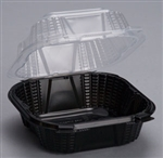 Small Hinged Sandwich Container