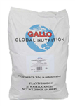 Organic Whey Protein Concentrate 90 Percent Dry Powder