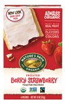 Strawberry Frosted Toaster Pastry - 11 Oz.