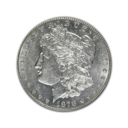 1878S Morgan Silver Dollar in Fine Condition (F15) Graded by AACGS