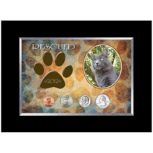 Rescued Year To Remember Cat 4 Coin Frame
