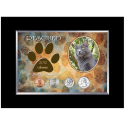 Personalized-Rescued Year To Remember Cat 4 Coin Frame
