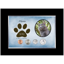 Personalized Cat Frame Year To Remember