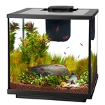 Wholesale Aqueon 7.5 Gallon LED Shrimp Aquarium Kit