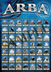 NEW ARBA Color Rabbit Breed Poster