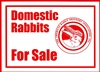 ARBA Domestic Rabbits For Sale Sign