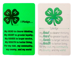 All Things Bunnies 4H Pledge Card