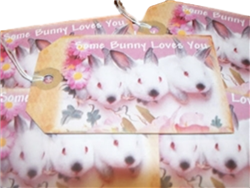 Some Bunny Loves You Gift Tags