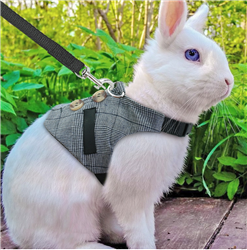 Distinguished Bunny Vest Harness/Leash