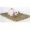 Peter's Rabbit Grass Mat