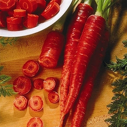 Atomic Red Carrot Seeds