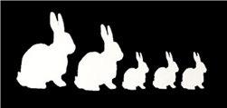 Rabbit Family Car Decal/Stickers