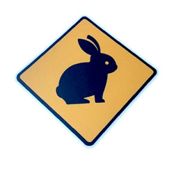 Caution Rabbit PVC Decal/Sticker