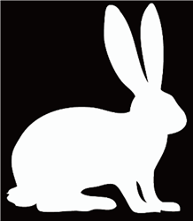 Rabbit Decal/Sticker