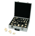 Set of 24 BONElike Vertebrae Models A793