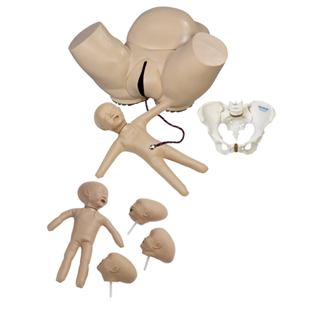 Obstetric Phantom Set - AR57
