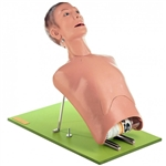 SOMSO Bronchoscopy Model - Broncho Boy CLA 9