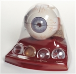 SOMSO Cataract Eye Model - CS22