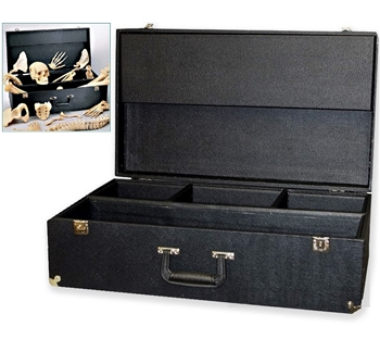 Compartmented Wood Case For Disarticulated Skeleton (SC63) - DGSC63