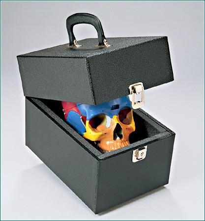 Locking Skull Case