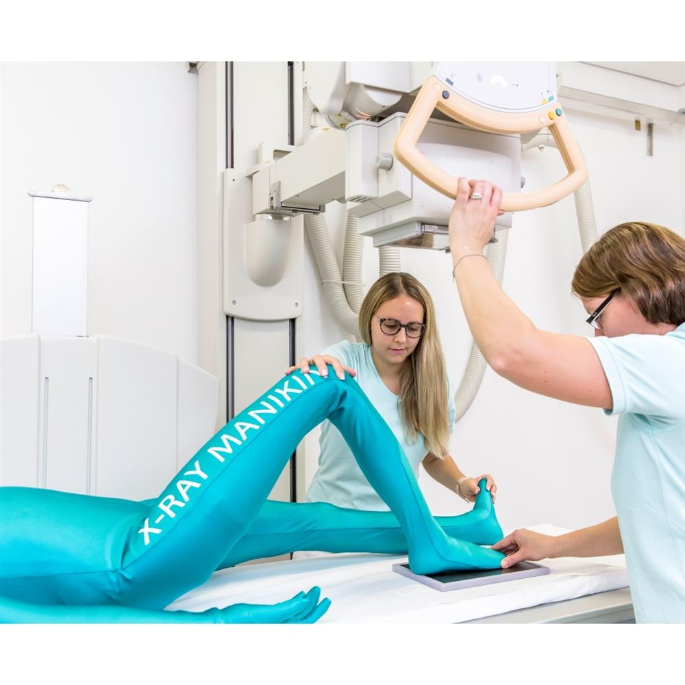 Full Body X Ray Phantom With Real Human Skeleton Bones