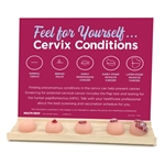 feel for yourself cervix conditions display