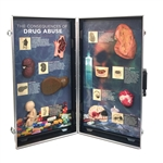 Drug Abuse Consequences 3D Display - HE-78928