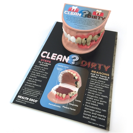 Clean Mouth/Dirty Mouth Display