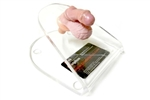 Hypospadia Surgical Simulator Kit - HPT