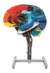 Kyoto Kagaku Multi-colored Brain Model