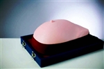 Visual-Tactile Breast Examination Simulator | Breast Examination Simulator