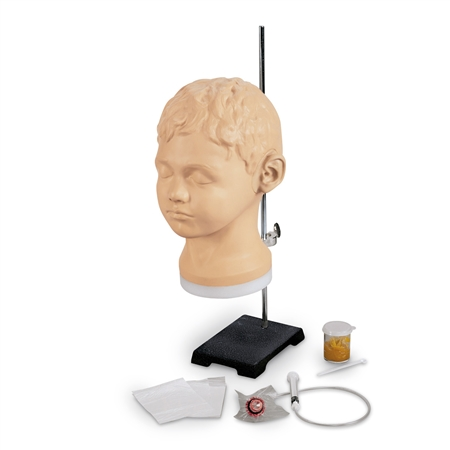 Diagnostic and Procedural Ear Trainer - LF01090U