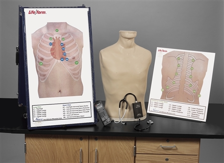 Deluxe Life/form® Auscultation Training Station On Sale