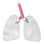 Replacement Lungs for Airway Management Trainer Manikins