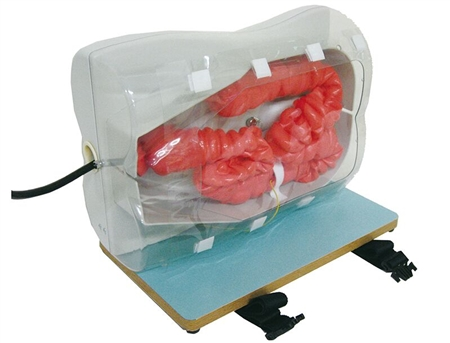 Koken Colonoscopy (Lower GI Endoscopy) Simulator Type II - LM-107