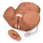 Advanced Patient Care Male and Female Catheterization Simulator - S230.10