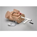 OB Susie® -  Maternal and Fetal Birthing Torso - S500.100