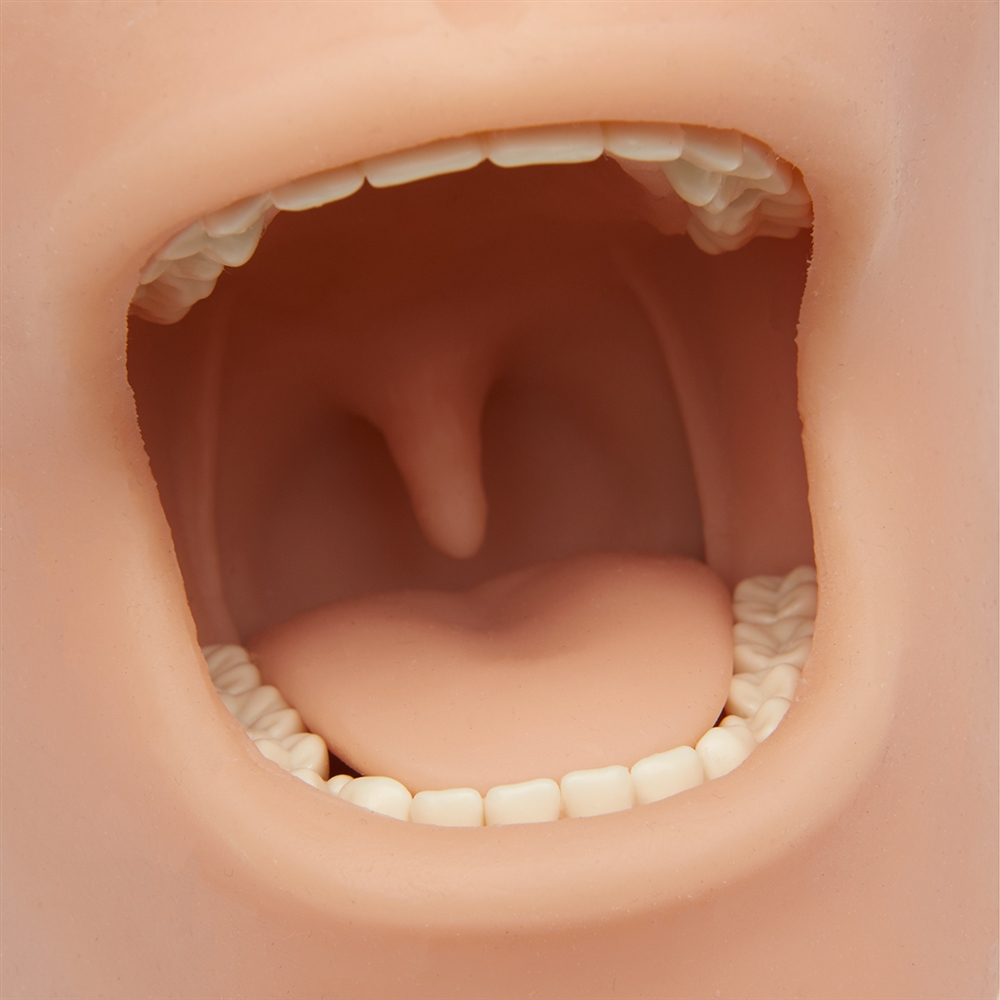 Oral Anesthesia Manikin Trainer with Light AND Sound Sensors