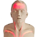 Brayden CPR Training Manikin with Red Indicator Lights - SB51965U