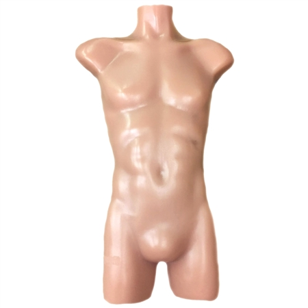 Adult Human Torso with Skeletal Version only - TPS-CT-A02