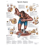 "Sports Injury STICKYchartâ""¢ VR1188S"