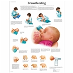 Breastfeeding Chart - VR1557L