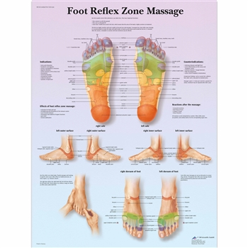 Foot Reflex Zone Massage Chart VR1810L